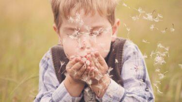 【まさに奇跡のレッスン】Novakid(ノバキッド)で5歳の息子がオンライン英会話を体験